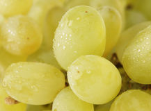 Green grapes 2 Stock Images