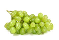 Free Green Grapes Royalty Free Stock Photography - 5236417