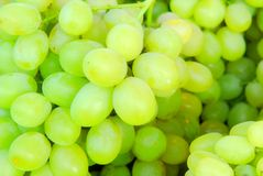 Green grapes background Stock Images