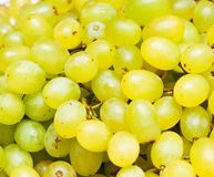 Green grapes background Royalty Free Stock Image
