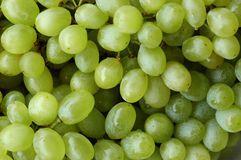 Green grapes background. A bunch of green grapes Royalty Free Stock Photography