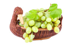 Green Grapes in a basket isolated on white Stock Images