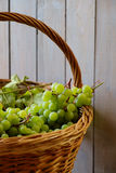 Green grapes in basket Stock Image
