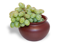 Green grapes in brown pot  Stock Photo