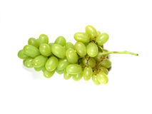 Green grapes bunch Stock Images