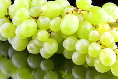 Green grapes close-up Stock Photography
