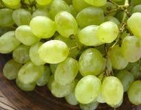 Green grapes Stock Image