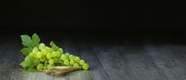 Green grapes. Green grape on black background stock photos