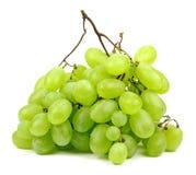 Green grapes. Stock Photos