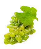 Green grapes isolated on white Royalty Free Stock Image