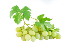 Green grapes with leaves Royalty Free Stock Image