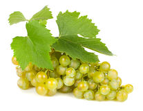 Green grapes with leaves. Stock Photography