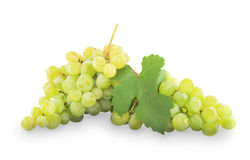 Green grapes with leaves. Isolated on white Stock Photos