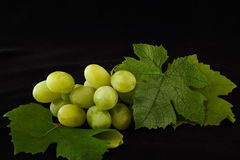Green Grapes With leaves. Sweet green grapes with leaves Stock Photos