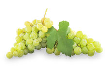 Green grapes with leaves.  on white Stock Image
