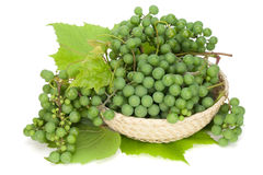 Green grapes lie in a basket Stock Image