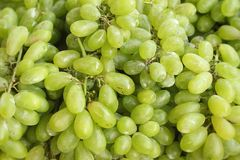 Green grapes at the market Stock Photography