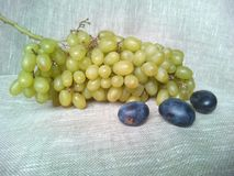 Green grapes and plums Royalty Free Stock Photography