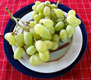 Green grapes on pottery and a red checked textile Stock Photography