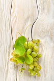Green grapes on the table Stock Images