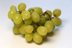 Green Grapes on a Table, Closeup Image. Ripe and juicy green grapes photographed on a table. Color image of healthy and delicious grapes. Closeup taken with a royalty free stock image