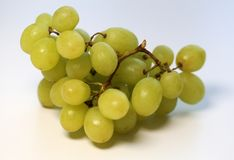 Green Grapes on a Table, Closeup Image. Ripe and juicy green grapes photographed on a table. Color image of healthy and delicious grapes. Closeup taken with a stock photography