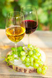 Green grapes and two glasses of the white and red wine on the vi Royalty Free Stock Photos