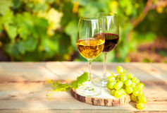 Green grapes and two glasses of the white and red wine on the vi Stock Image
