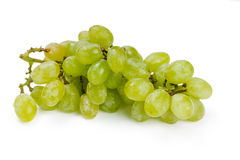 Green grapes in water drops Stock Images