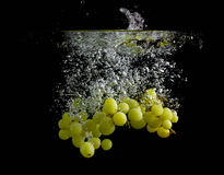 Green grapes in water Stock Image