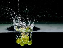 Green grapes into water, isolated on black Royalty Free Stock Photo