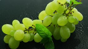 Green grapes on wet table