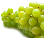 Green grapes on white. The green grapes on white background. Isolation, shallow DOF Stock Image