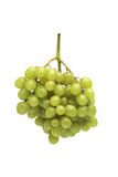 Green grapes on white background royalty free stock photography