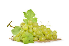 Green grapes. On white background stock photos