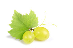 Green grapes. On white background royalty free stock photo