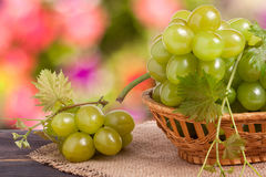 Green grapes in a wicker basket on wooden table with blurred background Stock Photos