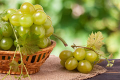 Green grapes in a wicker basket on wooden table with blurred background. Green grapes in a wicker basket on a wooden table with a blurred background stock photography