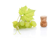 Green grapes. Green grapes and wine cork on white background. Culinary luxurious wine drinking still life. Sparse minimal elegant style stock image