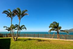 Green Gras, Blue See and Palm Trees Royalty Free Stock Photo