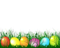 Green gras and easter eggs royalty free stock image
