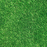Green gras texture Royalty Free Stock Images