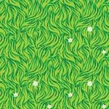 Green Grass stock photo
