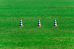 Green grass. And prohibiting cones Stock Photography