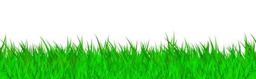 Free Green Grass Stock Photos - 12541783