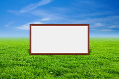 Green grass. Blue sky, sunny day Royalty Free Stock Images