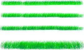 Green grass. Four backgrounds of green grass on white background Stock Photography