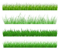 Green grass. And field patterns isolated on white background Royalty Free Stock Images