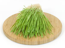 Green grass. Fresh green grass round cutting board Stock Photo