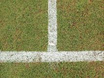 Green grass. With white line of football field Stock Photography